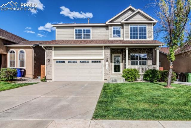 14143 Albatross Drive, Colorado Springs, CO 80921 (#8771009) :: Perfect Properties powered by HomeTrackR