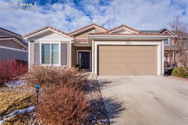 2422 Snow Cap Court, Colorado Springs, CO 80915 (#8771113) :: 8z Real Estate