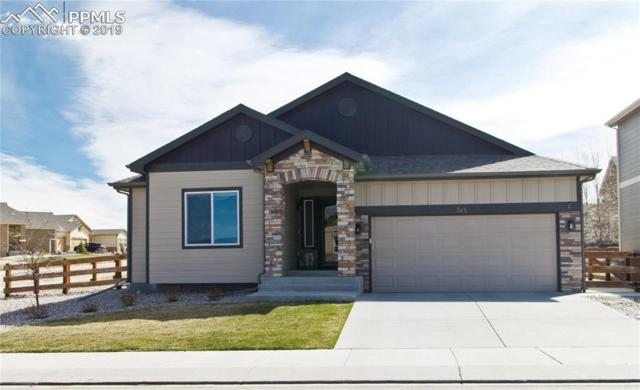 743 Tailings Drive, Monument, CO 80132 (#8771648) :: Tommy Daly Home Team