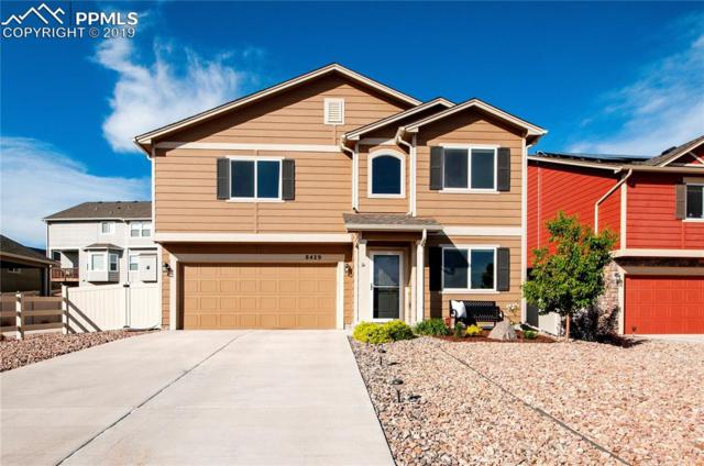 8429 Needle Drop Court, Colorado Springs, CO 80908 (#8773086) :: Tommy Daly Home Team