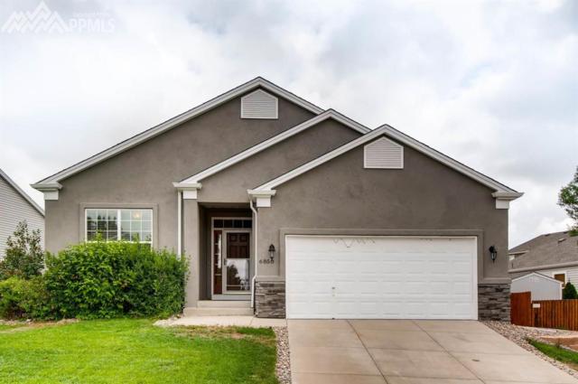 6850 Barela Court, Colorado Springs, CO 80923 (#8774419) :: 8z Real Estate