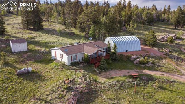 403 Bear Trail, Florissant, CO 80816 (#8775031) :: 8z Real Estate