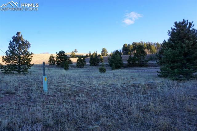 170 Forest Lane, Florissant, CO 80816 (#8776516) :: Compass Colorado Realty