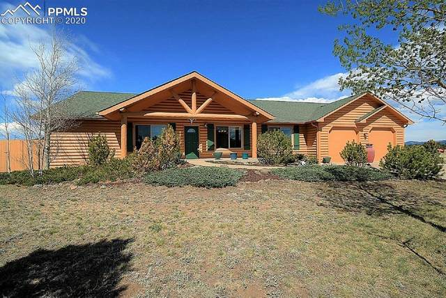 5020 County Road 71, Guffey, CO 80820 (#8778987) :: CC Signature Group