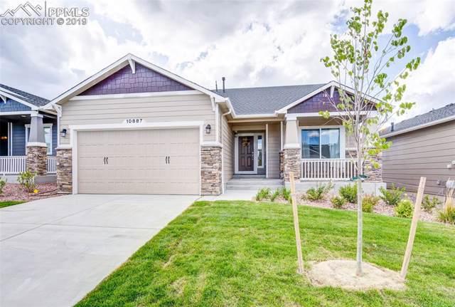 10887 Hidden Brook Circle, Colorado Springs, CO 80908 (#8781181) :: The Treasure Davis Team