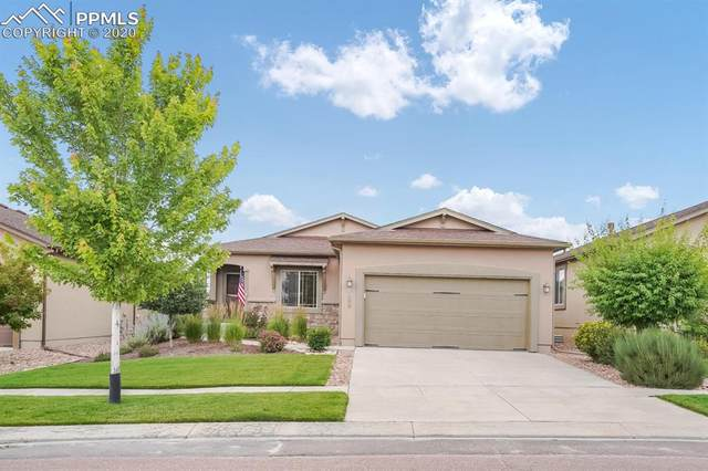 6298 Cumbre Vista Way, Colorado Springs, CO 80924 (#8782017) :: Tommy Daly Home Team