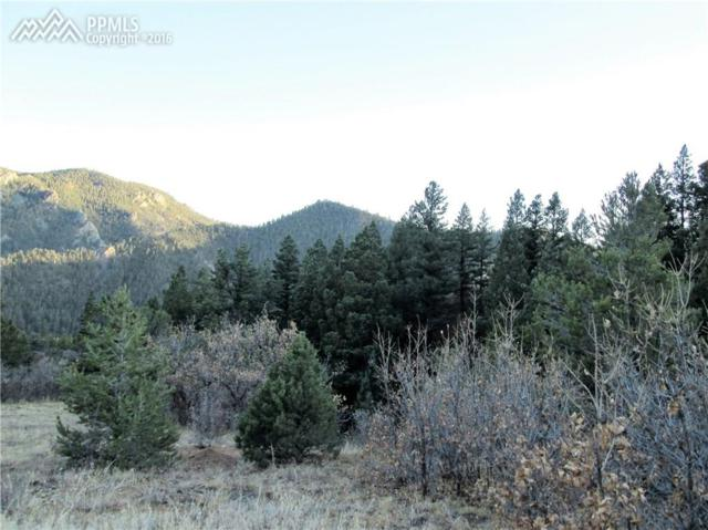 422 Highlands Drive, Canon City, CO 81233 (#8782599) :: 8z Real Estate