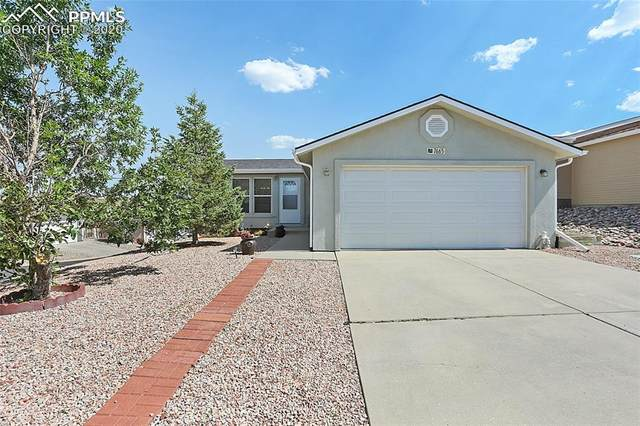 7665 Grosbeak Point, Colorado Springs, CO 80922 (#8784524) :: CC Signature Group