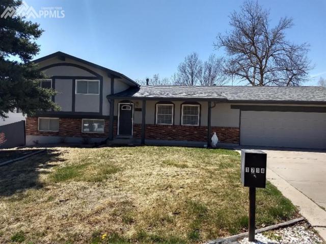 1714 Russell Circle, Colorado Springs, CO 80915 (#8789847) :: RE/MAX Advantage