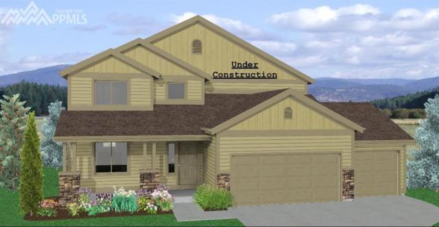 6232 Anders Ridge Lane, Colorado Springs, CO 80923 (#8790003) :: The Daniels Team