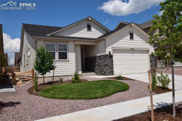 7245 Rim Bluff Lane, Colorado Springs, CO 80927 (#8790392) :: Action Team Realty