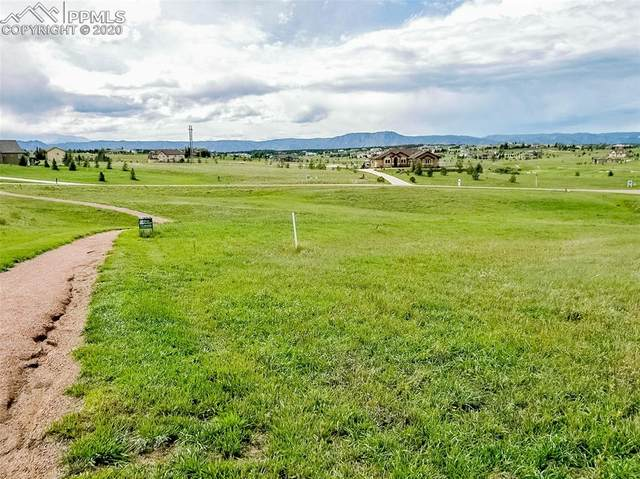19732 Royal Troon Drive, Monument, CO 80132 (#8790501) :: The Daniels Team