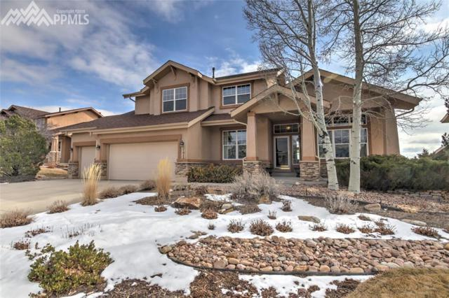 3171 Deergrass Place, Colorado Springs, CO 80920 (#8791122) :: Jason Daniels & Associates at RE/MAX Millennium