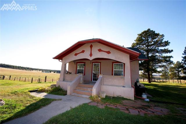 18094 County 94 Road, Calhan, CO 80808 (#8793849) :: The Dunfee Group - Keller Williams Partners Realty