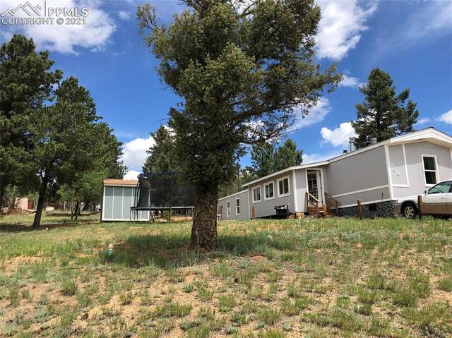 169 Daisy Street, Woodland Park, CO 80863 (#8794515) :: The Gold Medal Team with RE/MAX Properties, Inc