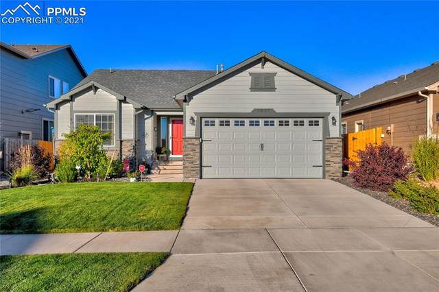 7437 Cat Tail Creek Drive, Colorado Springs, CO 80923 (#8795921) :: 8z Real Estate