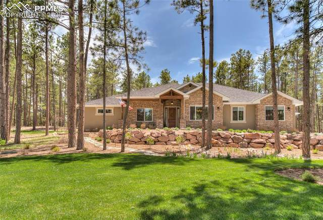 19004 Hilltop Pines Path, Monument, CO 80132 (#8796455) :: Action Team Realty