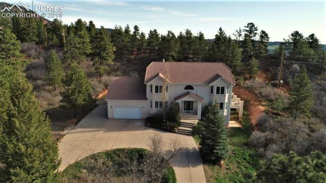 4850 Sandstone Drive, Monument, CO 80132 (#8796581) :: Action Team Realty