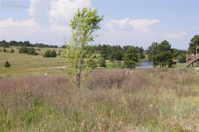 17640 Cabin Hill Lane, Colorado Springs, CO 80908 (#8797342) :: 8z Real Estate