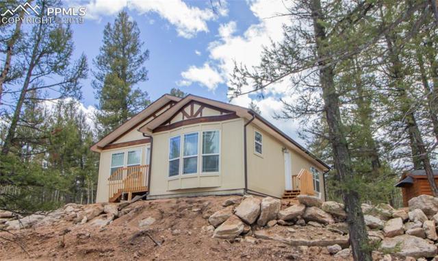 67 Alpine Drive, Florissant, CO 80816 (#8799964) :: 8z Real Estate