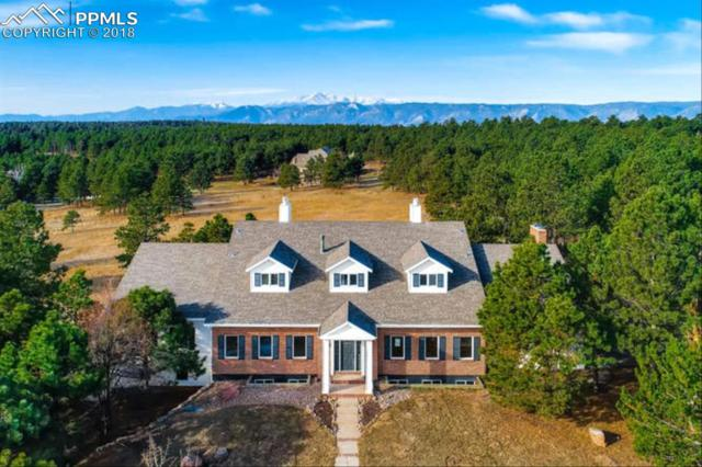 862 Long Timber Lane, Monument, CO 80132 (#8803327) :: 8z Real Estate