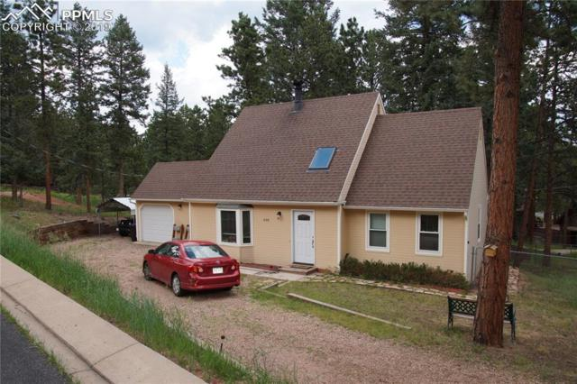 430 Shady Lane, Woodland Park, CO 80863 (#8804290) :: Tommy Daly Home Team