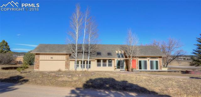 2680 Walker Court, Monument, CO 80132 (#8804339) :: Jason Daniels & Associates at RE/MAX Millennium