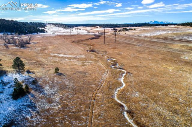 000000 County Line Road, Elbert, CO 80106 (#8806141) :: CENTURY 21 Curbow Realty