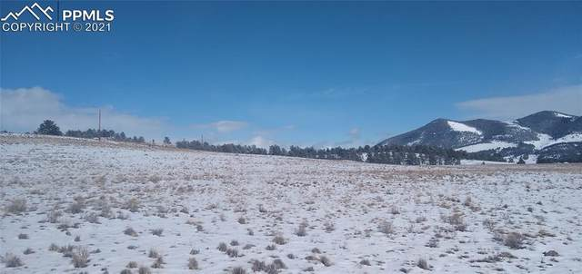 511 Old Kathleen Trail, Guffey, CO 80820 (#8810198) :: The Treasure Davis Team | eXp Realty