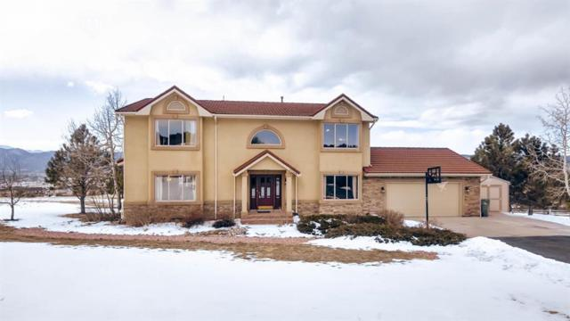 17360 Early Star Drive, Monument, CO 80132 (#8810739) :: 8z Real Estate