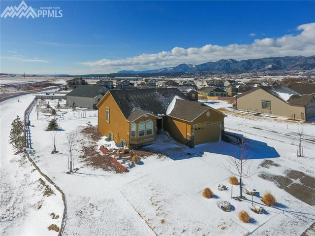 16748 Buffalo Valley Path, Monument, CO 80132 (#8810821) :: The Peak Properties Group