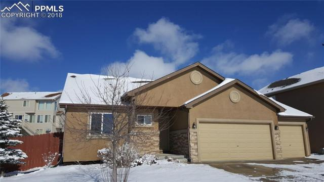 12546 Mt Belford Way, Peyton, CO 80831 (#8815039) :: The Hunstiger Team
