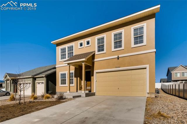7924 Moondance Trail, Fountain, CO 80817 (#8817396) :: 8z Real Estate