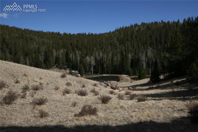 3179 County 61 Road, Cripple Creek, CO 80813 (#8820648) :: 8z Real Estate
