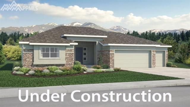 16478 Dancing Bear Lane, Monument, CO 80132 (#8822658) :: The Dunfee Group - Keller Williams Partners Realty