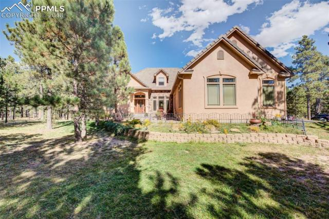 15605 Pole Pine Point, Colorado Springs, CO 80908 (#8823347) :: The Hunstiger Team