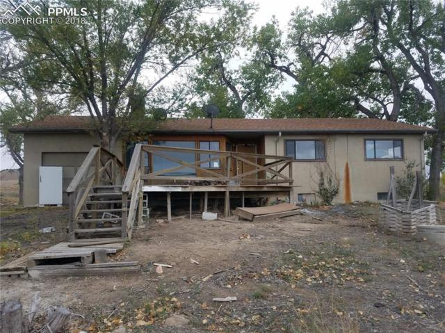 454 County 111 Road, Florence, CO 81226 (#8823619) :: Colorado Home Finder Realty