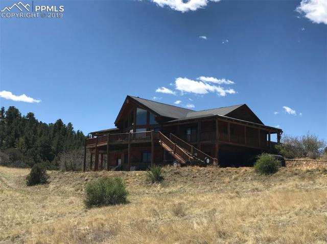 454 Cap Rock Road, Canon City, CO 81212 (#8825426) :: Tommy Daly Home Team