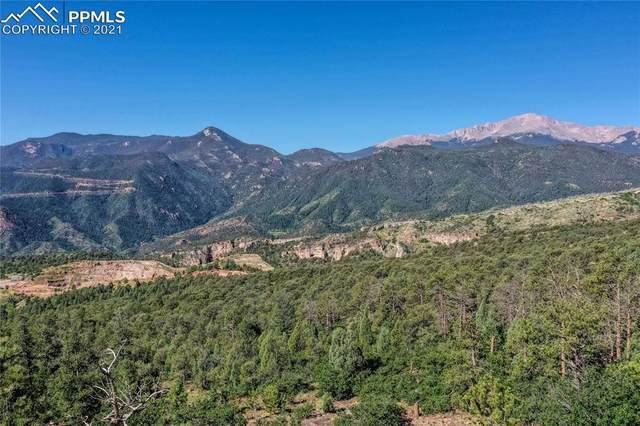 4525 Monitor Rock Lane, Colorado Springs, CO 80904 (#8826691) :: The Harling Team @ HomeSmart