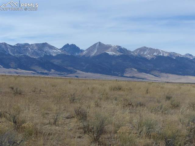 1010 Brokenhand Road, Westcliffe, CO 81252 (#8827084) :: CC Signature Group
