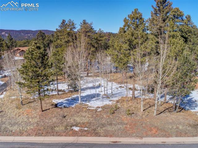 630 Pembrook Drive, Woodland Park, CO 80863 (#8829791) :: The Peak Properties Group