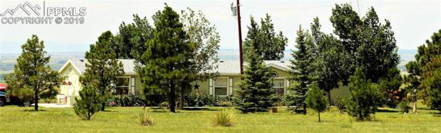 8290 Soap Weed Road, Calhan, CO 80808 (#8831053) :: Tommy Daly Home Team