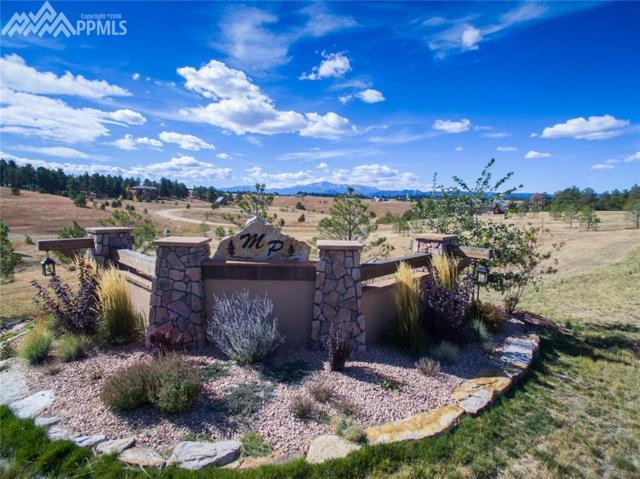 3681 Blue Heron Spring Lane, Colorado Springs, CO 80908 (#8836586) :: The Hunstiger Team