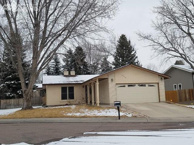 3814 Windsong Court, Colorado Springs, CO 80917 (#8838695) :: 8z Real Estate