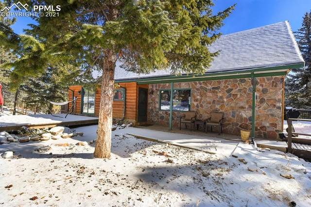 126 Lichen Lane, Golden, CO 80403 (#8839131) :: Realty ONE Group Five Star