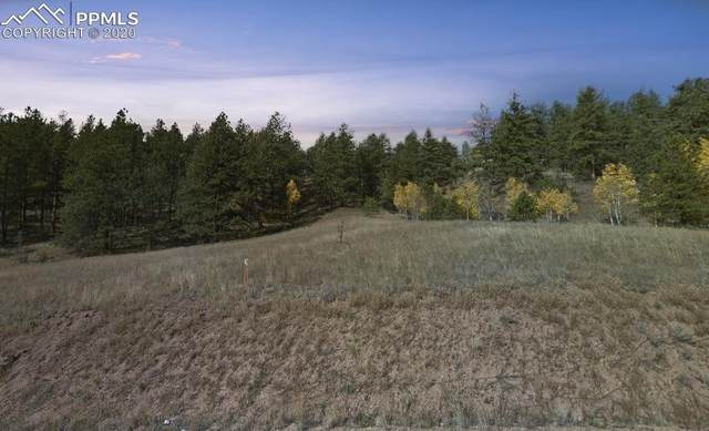 428 Bear Mountain Road, Florissant, CO 80816 (#8840962) :: The Kibler Group