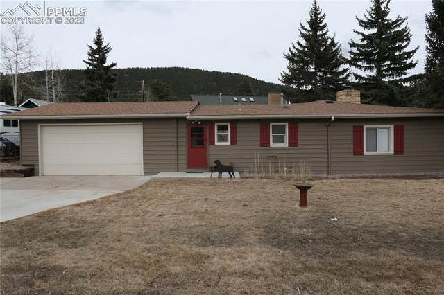 700 Fullview Avenue, Woodland Park, CO 80863 (#8845707) :: Action Team Realty