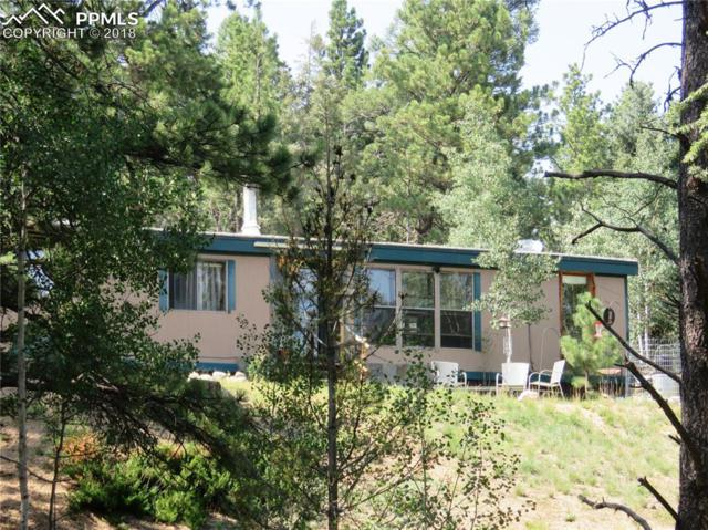 410 Rangeview Road, Divide, CO 80814 (#8846687) :: Harling Real Estate