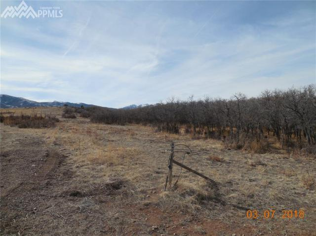 230 Running Bear, Cotopaxi, CO 81223 (#8847411) :: 8z Real Estate