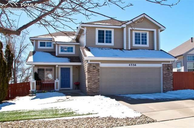 4556 Laramie Sky Drive, Colorado Springs, CO 80922 (#8850523) :: Tommy Daly Home Team